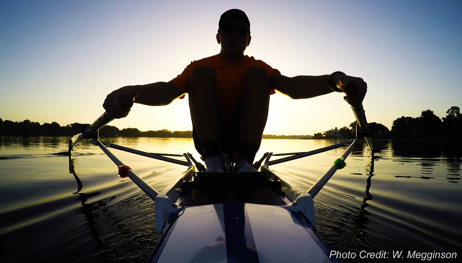 Sculling At Sunrise